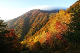 autunno toscana colori novembre